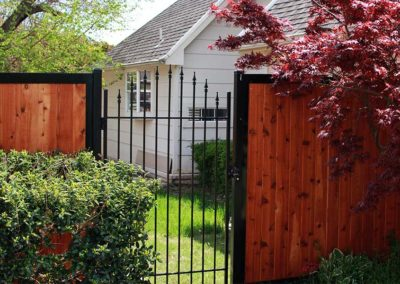 Arched Iron Fence Gate